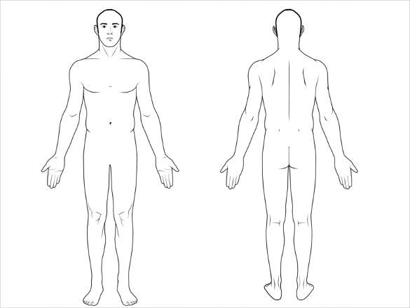 11+ Free Body Diagram - Free Printable Download  Free & Premium  Intended For Blank Body Map Template With Blank Body Map Template