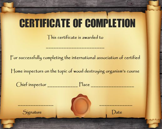 Certificates Archives - Page 11 of 11 - Template Sumo Inside Certificate Scroll Template Throughout Certificate Scroll Template