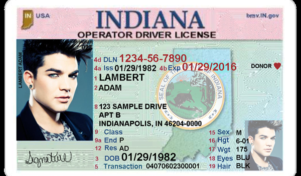 🏆 [DIAGRAM in Pictures Database] Uk Drivers License Template Just  Inside 89 Blank Drivers License Template
