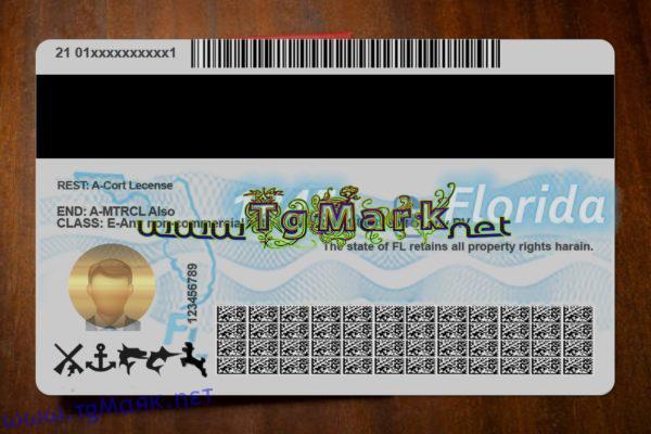 Florida Drivers License Template psd (multi templates) For Florida Id Card Template Within Florida Id Card Template