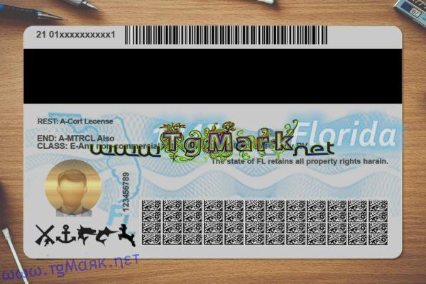 Florida Drivers License Template psd (multi templates) Regarding Florida Id Card Template Intended For Florida Id Card Template