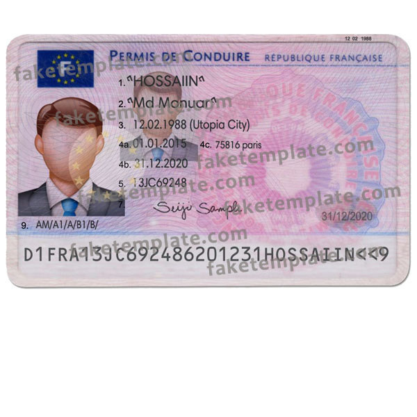 France Driver Licence Template - Fake French Driving Licence Throughout Blank Drivers License Template In Blank Drivers License Template