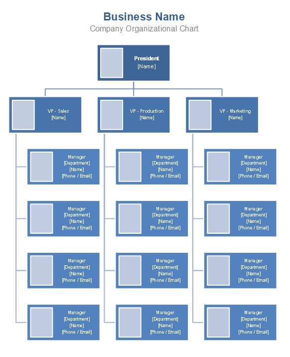 Free Organizational Chart Template - Company Organization Chart Throughout Word Org Chart Template Regarding Word Org Chart Template