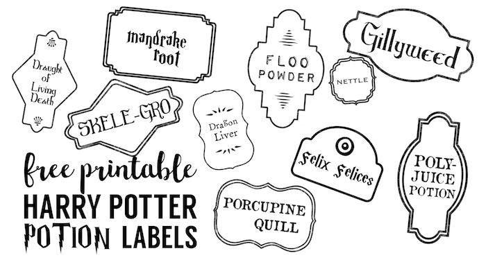 Harry Potter Potion Labels Printable  Paper Trail Design With Harry Potter Potion Labels Templates Inside Harry Potter Potion Labels Templates
