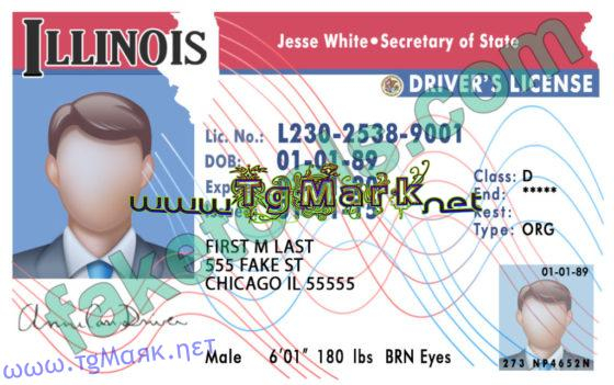 Illinois Drivers License Template psd In 89 Blank Drivers License Template Within 89 Blank Drivers License Template