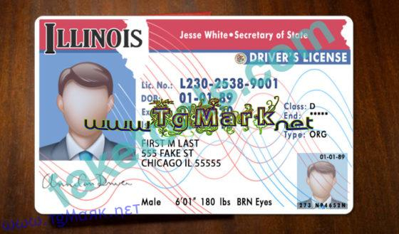 Illinois Drivers License Template psd Regarding 89 Blank Drivers License Template Regarding 89 Blank Drivers License Template