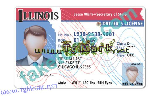 Illinois Drivers License Template psd With Regard To 89 Blank Drivers License Template For 89 Blank Drivers License Template