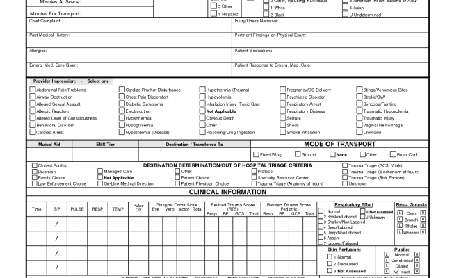 Patient Care Report Template 11 Professional Templates - Dokter Andalan In Patient Care Report Template Regarding Patient Care Report Template