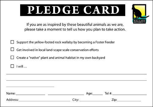 Pledge Google Search Card Template Pledge Labels Printables Free  Inside Free Pledge Card Template Regarding Free Pledge Card Template