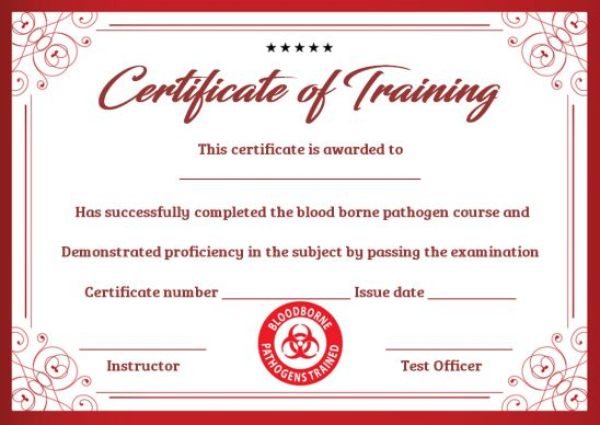 Training Certificate Template Archives - Page 11 of 11 - Template Sumo For Army Certificate Of Completion Template