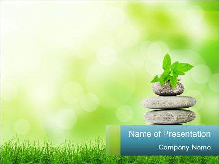 Zen Practise PowerPoint Template & Infographics Slides Intended For Presentation Zen Powerpoint Templates Inside Presentation Zen Powerpoint Templates